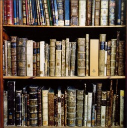 A glorious shelf of books (found on Google Images)