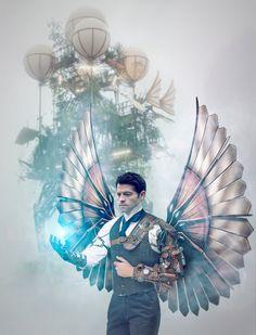 folding wings