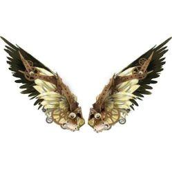 wing look